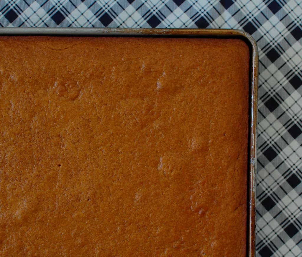 Baked pumpkin bars in a sheet pan, unfrosted.