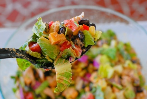 Spoonful of Tex-Mex chopped chicken salad.
