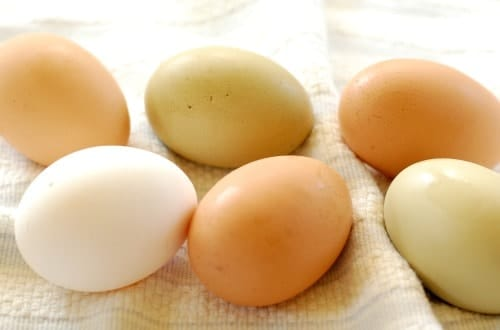 Fresh eggs. Right off the farm. | joeshealthymeals.com