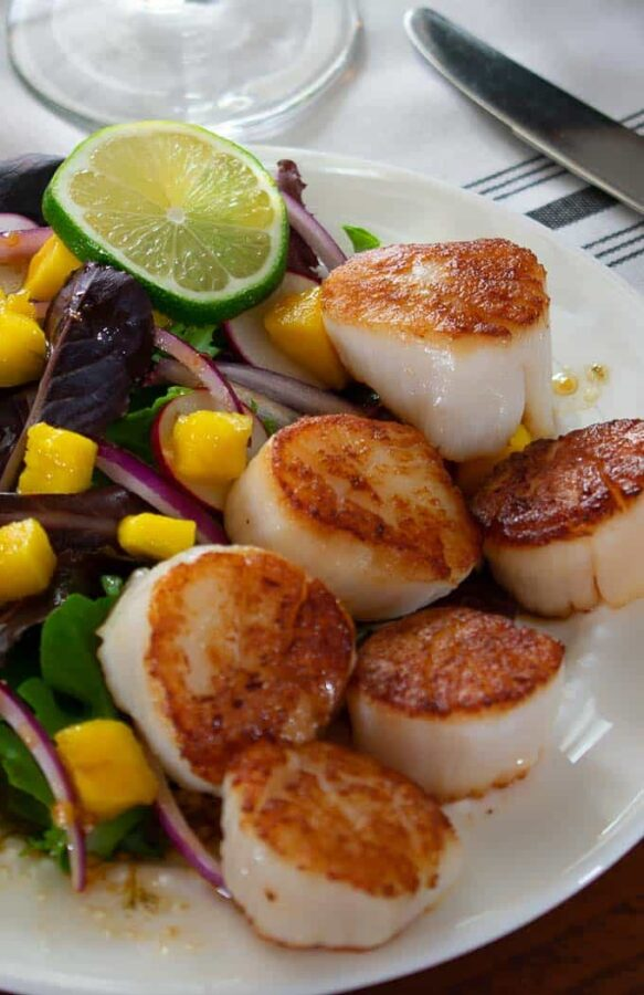 Seared scallop salad with spring greens, mango, and balsamic dressing.