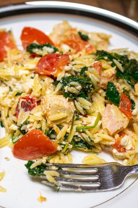 Plate of chicken with orzo casserole