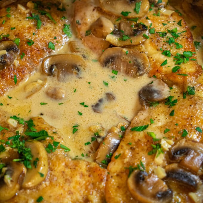 close-up of browned chicken breast, mushrooms and Marsala sauce